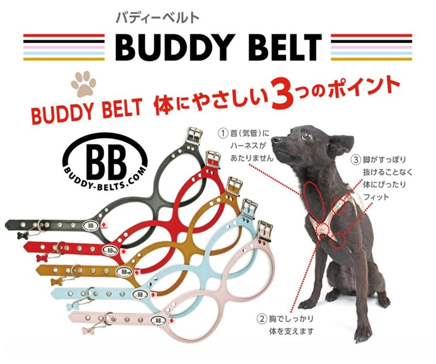 BUDDY BELT(バディーベルト)